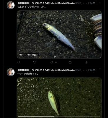 Twitter キャプチャー画像