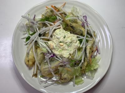 サバっ子のフリッターのサラダ
