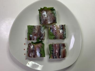 ウルメイワシとアジの押し寿司