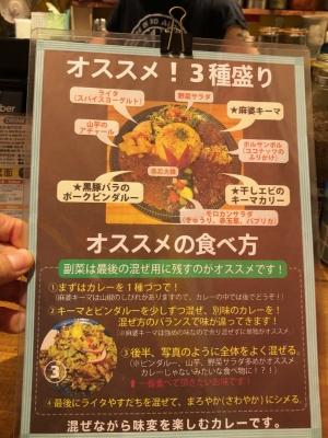 Harmonia_curry_2108-106.jpeg