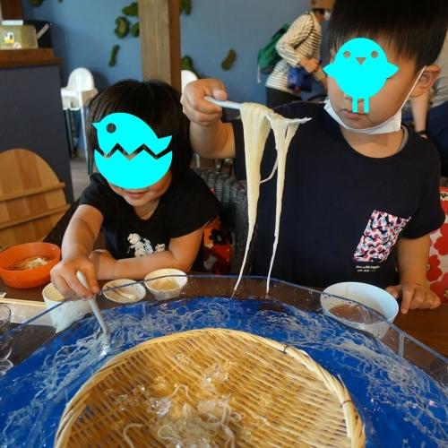 三輪 そうめん流し 乾製麺 追加 (3)12
