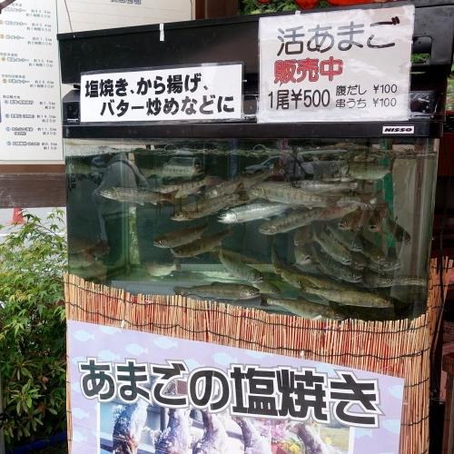 道の駅 吉野路黒滝 フードテラス (12)