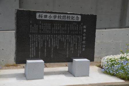 20210505桜田小学校16