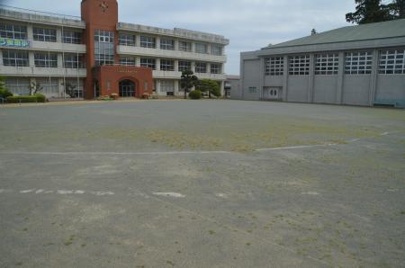 20210505桜田小学校14