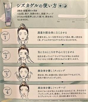 SHIZUKA-NY3.jpg