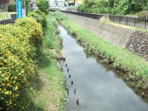 阿久和川の川幅01