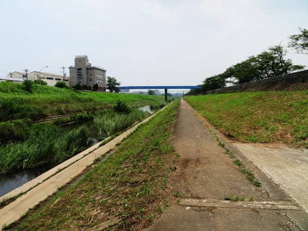 柏尾川の川辺01