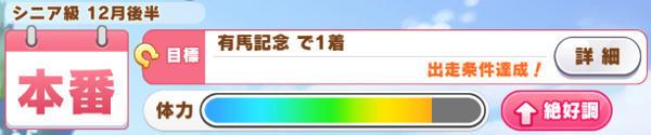 Aランゴルシ育成有馬記念01
