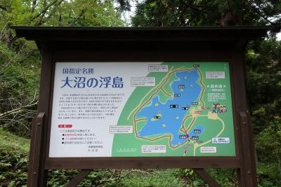 朝日町 大沼の浮島