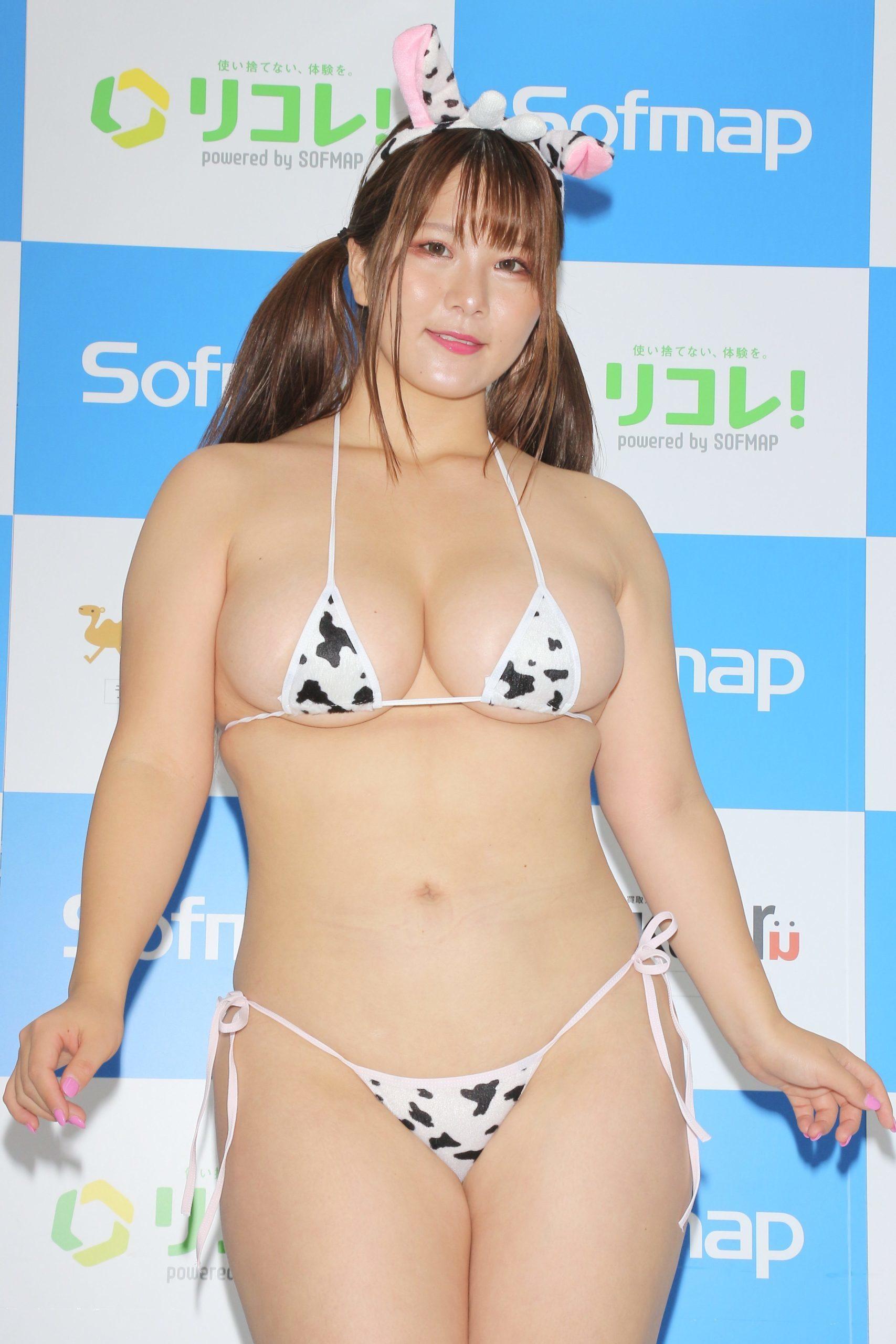 hoshino_ume200.jpg