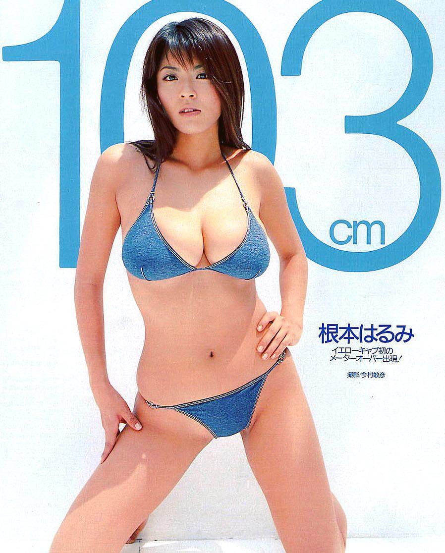 nemoto_harumi271.jpg