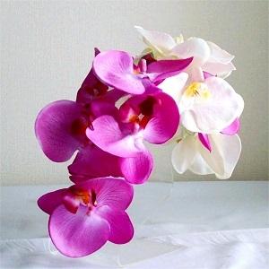 結婚式髪飾り・大輪ホワイトとラベンダー胡蝶蘭で華麗な装い