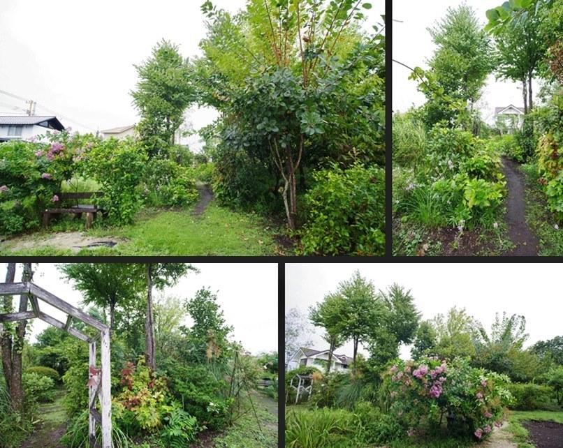 IMGP5678-horz-vert.jpg