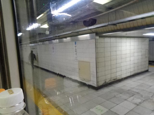 DSC01360.jpg