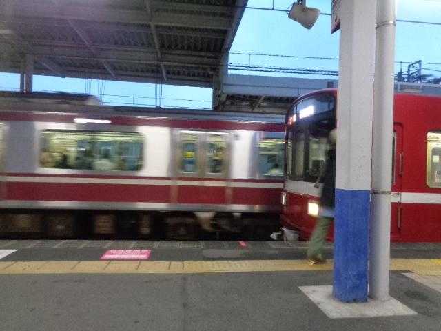 DSC01391.jpg