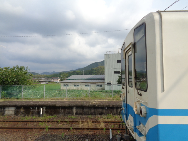 DSC01708.jpg