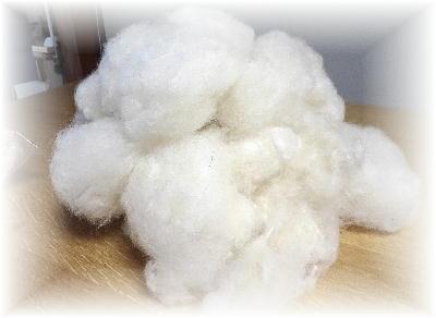 羊毛1-1