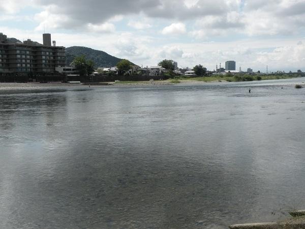 長良橋下流のガリ