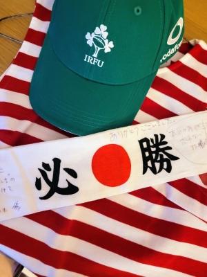 JapanvsIrelandinAviva0721