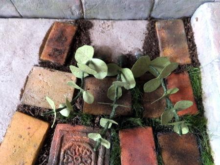 イスと植物10