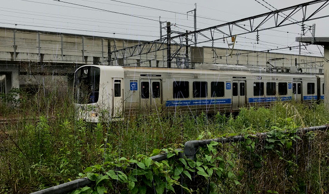 雨と811系電車