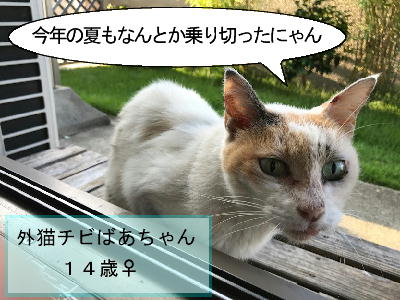 chibi0903-1.jpg