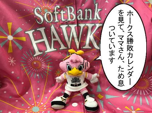 hawks0910-3.jpg