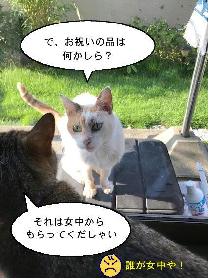 keirou-002.jpg
