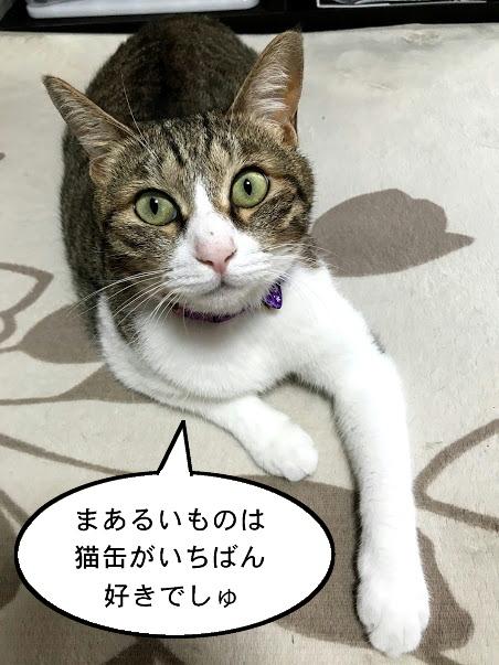 tsuki0923.jpg