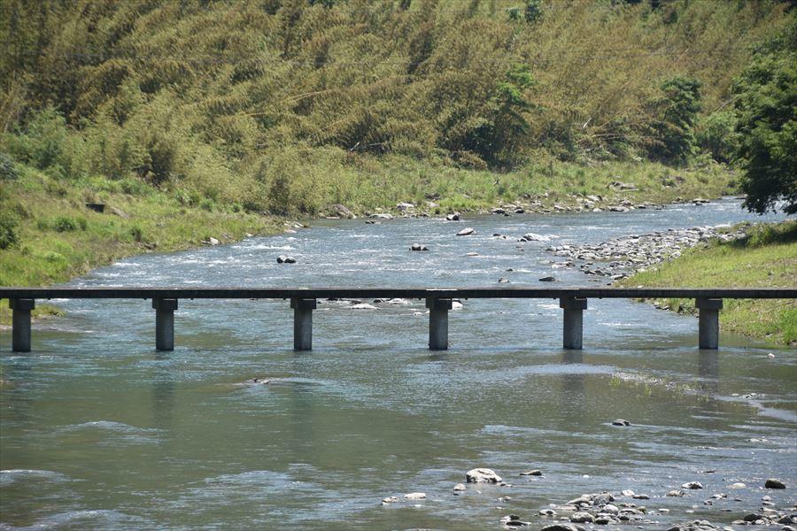 緑と潜水橋2