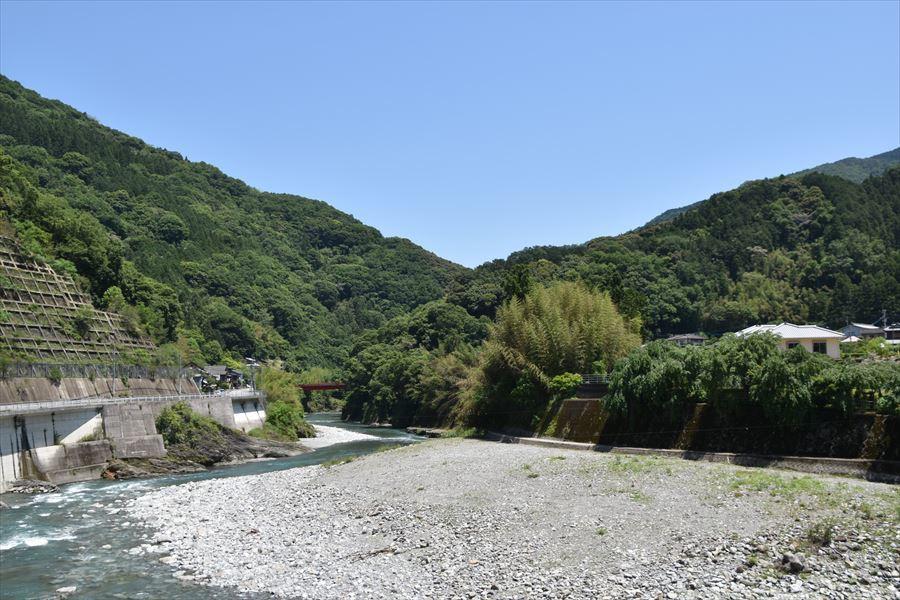 緑と潜水橋4