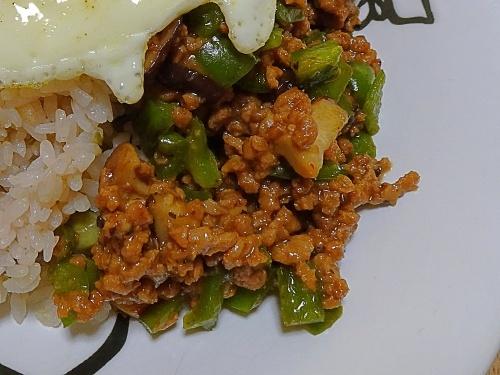 大豆のお肉のガパオライス
