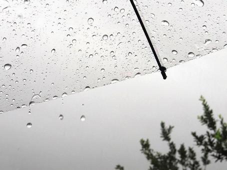 fall_rain7678.jpg