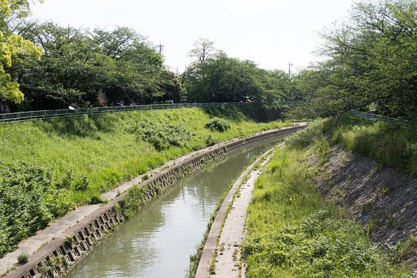 香流川初夏風景