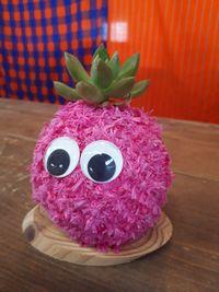 【写真】受付カウンターに飾っているピンクのモスビー