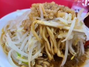 立川マシマシ長岡店 中ラーメン 麺