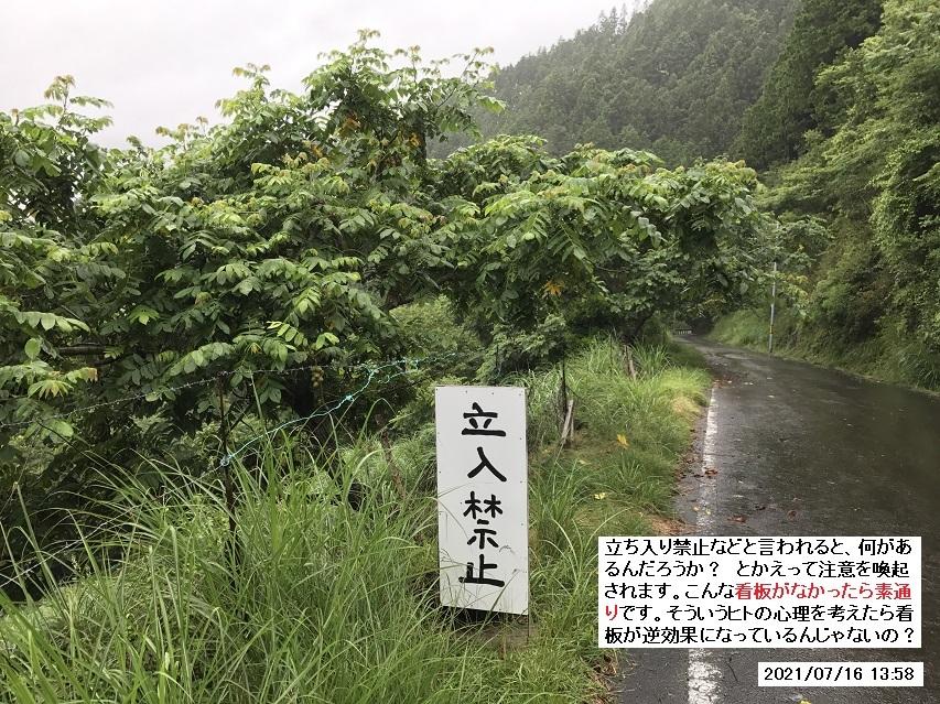 矢筈山へ向かうも、雨天のため登山は断念