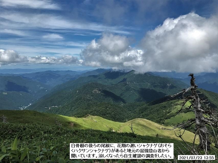 剣山、富士の池ルート、2021年7月23日