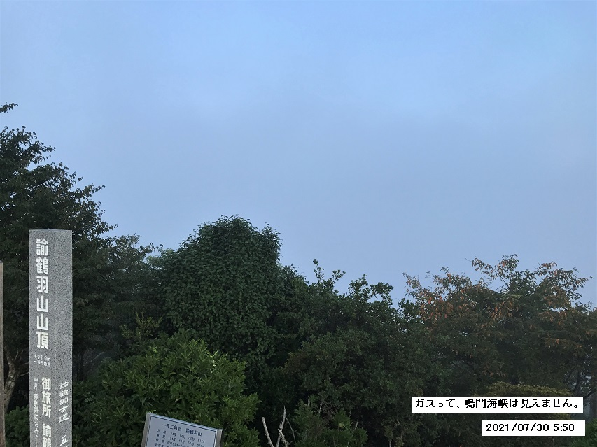 7月30日の朝のお散歩