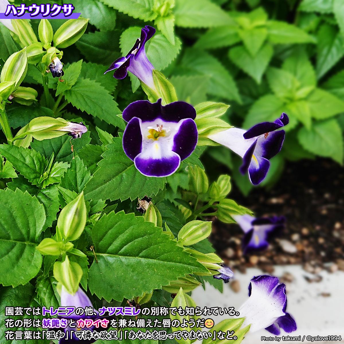 DSC_0014_20210814172539524.jpg