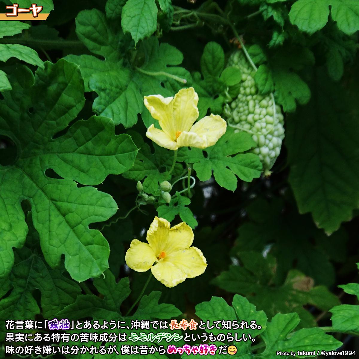 DSC_8014.jpg