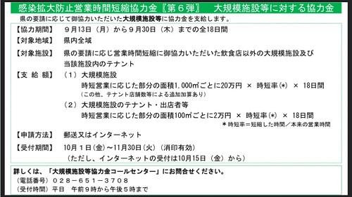 【栃木県 新型コロナ対策/緊急事態宣言 延長へ…】期間:~9月30日(木)⑦