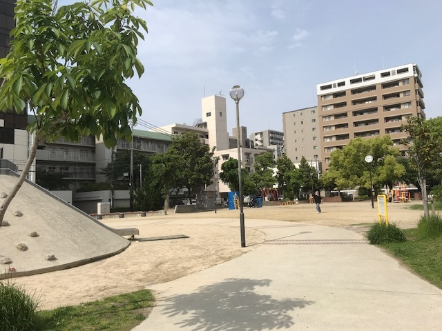 エノキ公園②