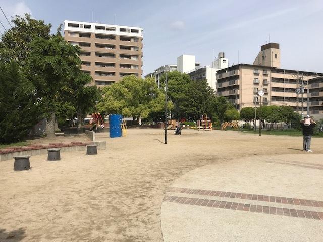 エノキ公園③