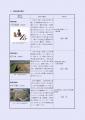 web-r3-岐阜県発掘調査報告会