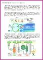 web01-sekisui-EPSON061.jpg