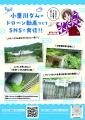 web02-origawa-2021-07.jpg