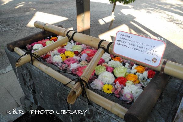 2020年12月27日2芳川神社